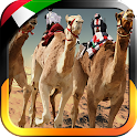 UAE Camel Racing...