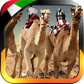 UAE Camel Racing - Free Game