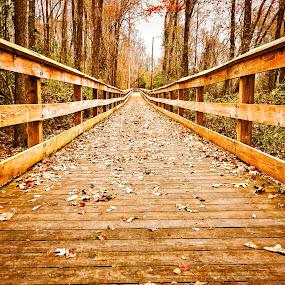 Clark Park Boardwalk by Lou Plummer - Instagram & Mobile iPhone (  )