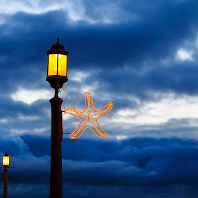 Starfish Light by Nolan Hauke - Artistic Objects Other Objects ( clouds, lights, starfish, dusk )