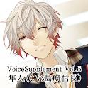 Voicesupplement icon