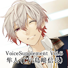 Voicesupplement icon