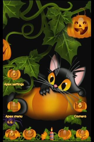 アペックス GOテーマキティ&かぼちゃ