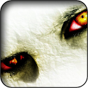 Eyes Wallpapers icon