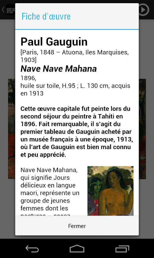Musée des Beaux-Arts de Lyon - screenshot