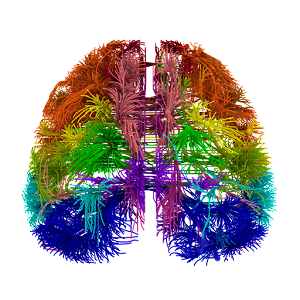 Train your Brain APK