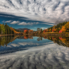 Cloud Reflection by Anne Marie Hickey - Landscapes Cloud Formations ( clouds, acadia national park, autumn, fall, trees )