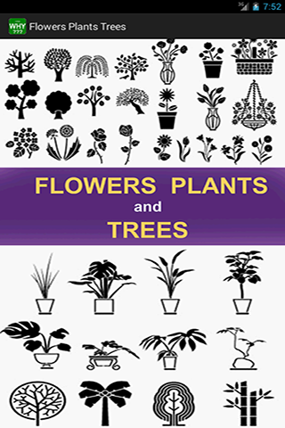 Flowers Plants Trees