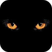 Wild Eyes Live Wallpaper