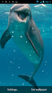 Dolphin Live Wallpaper screenshot 4