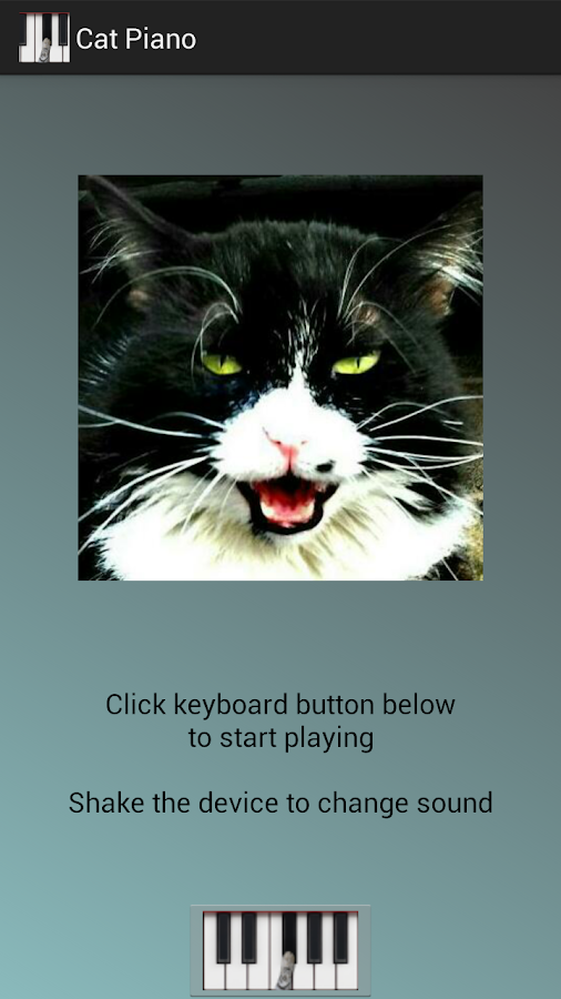 Cat Piano - screenshot