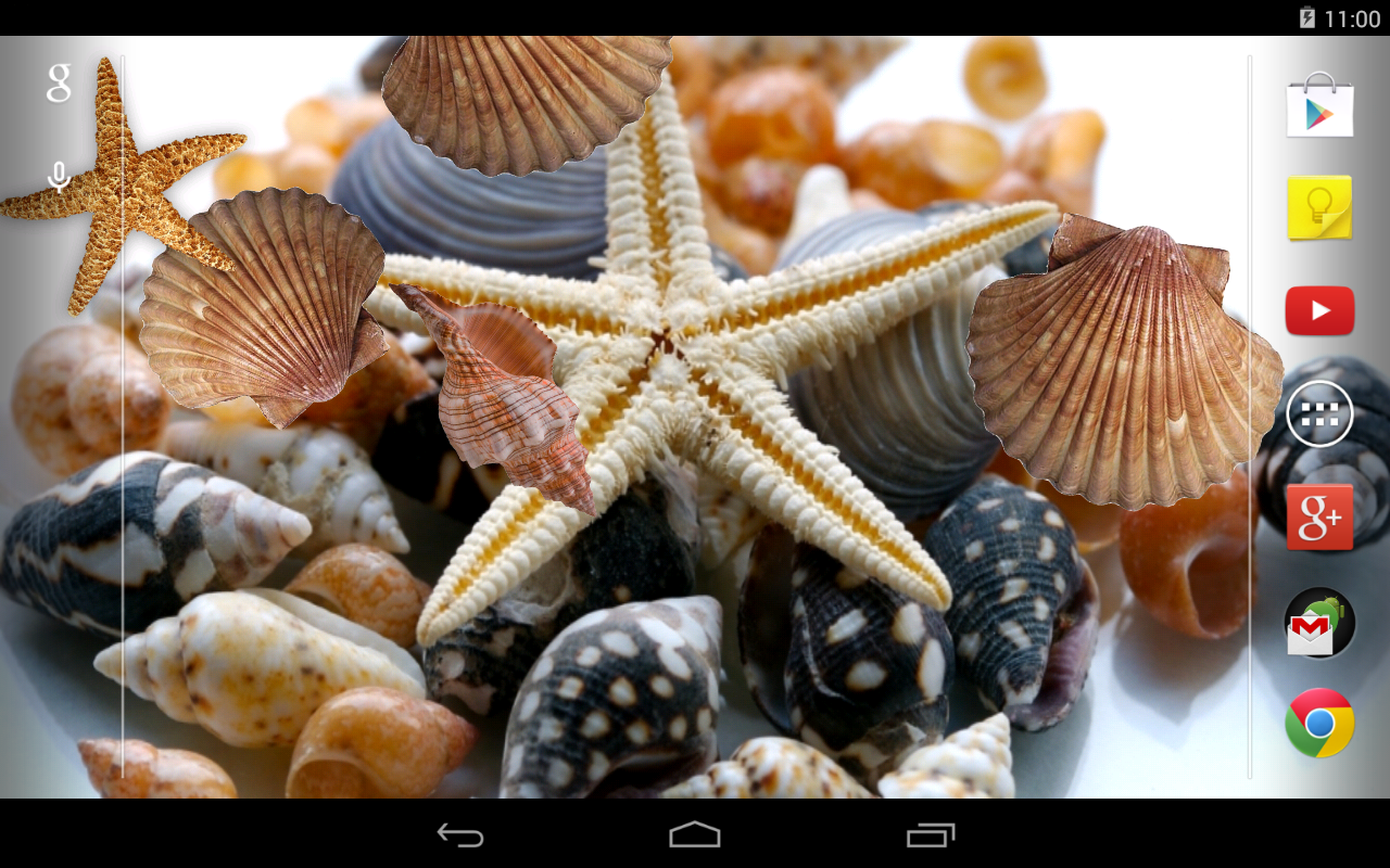Sea shells Live Wallpaper- screenshot