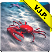 Beach Crab live wallpaper