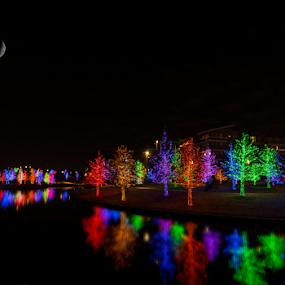 Christmas 2014 at Vitruvian Park  by Amitabh Mukherjee - City,  Street & Park  Night ( lights, 2014, d750, colors, joy, texas, christmas, trees, vitruvian, long exposure, celebration, addison, decoration, object )