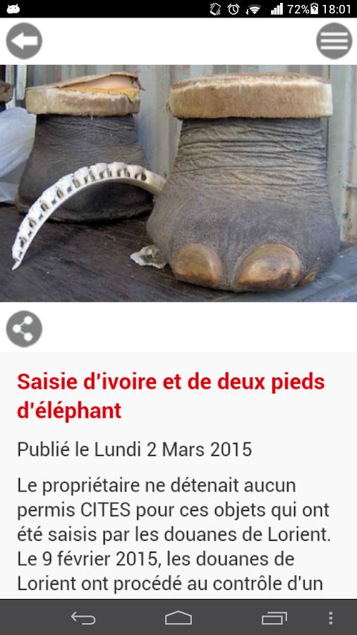 DOUANE FRANÇAISE - screenshot
