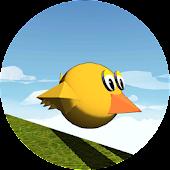 Flap, Birdy! Flap!