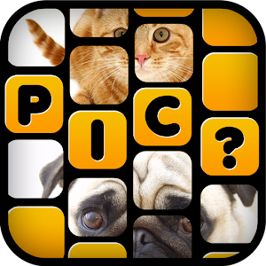 What's The Picture – Guess Pic for PC and MAC
