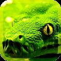 Predatory Snakes LWP icon