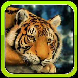 Moody Tiger 攝影 App Store-癮科技App