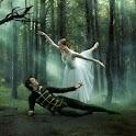 Ballerinas icon