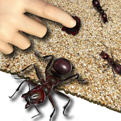 Ant Crusher Live Wallpaper