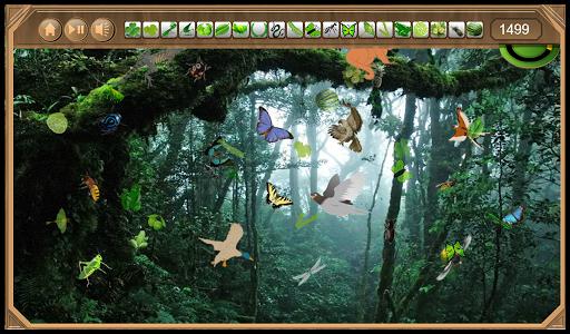 Rain Forest Hidden Objects