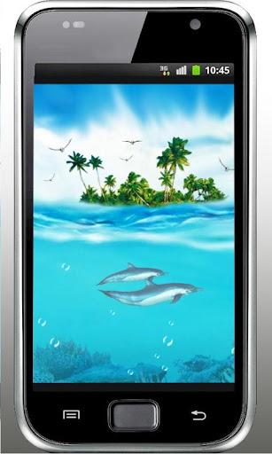 Dolhpin Beach live wallpaper