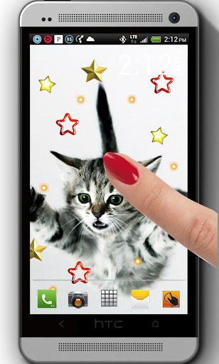 Pet Animals live wallpaper