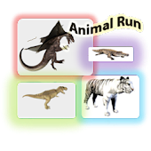 Animal World Run