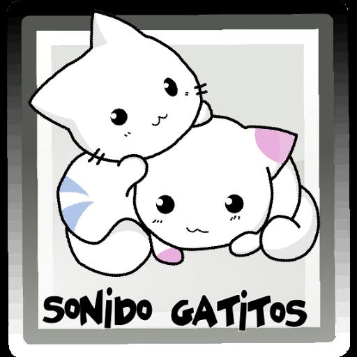 Sonido audio gatos y gatitos