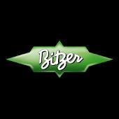 Pistones Bitzer