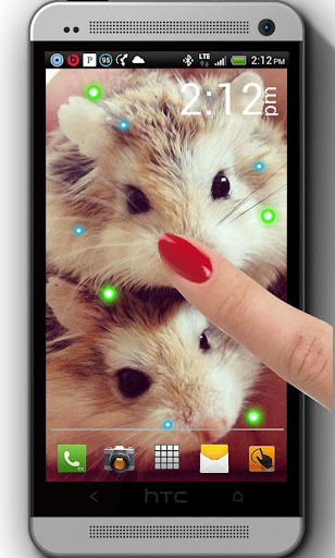 Cute Hamster live wallpaper
