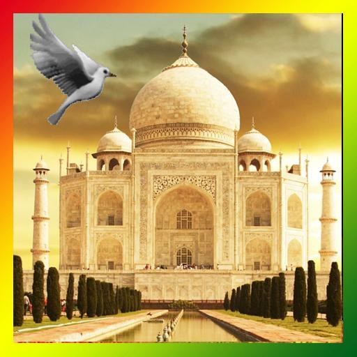 Taj Mahal Birds Live Wallpaper Apps On Google Play