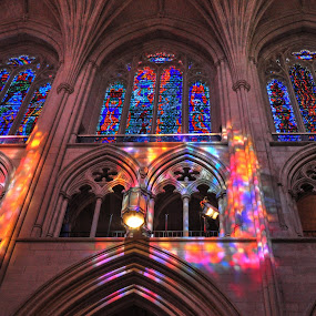 Cathedral Colors by Terry Niec - Buildings & Architecture Architectural Detail ( reflection, cathedral, national cathedral, stained glass, colorful, mood factory, vibrant, happiness, January, moods, emotions, inspiration,  )
