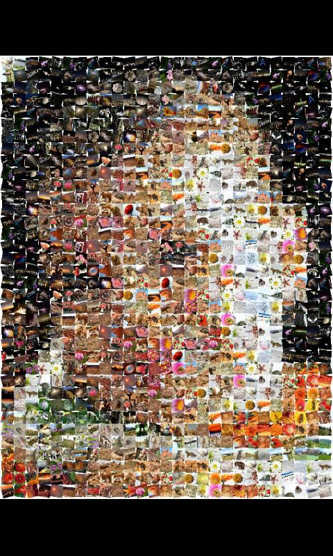 ZaBa Photo Mosaic- screenshot