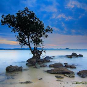 by Fadel Satriawan - Landscapes Sunsets & Sunrises