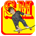 Sean McNulty Skateboard Lite logo