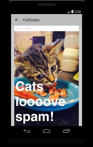 CatSwipe