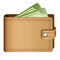 Easy Wallet PRO icon