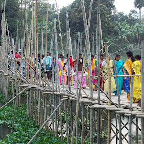 The Bridge by Udaybhanu Sarkar - People Street & Candids ( bamboo, connecter, bridge, public, people,  )