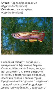 Все виды аквариумных рыб - screenshot thumbnail