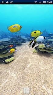 Tropical Ocean 360°Trial