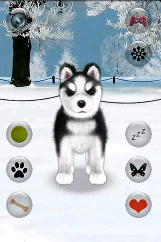 Talking Husky - screenshot
