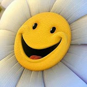 smiley face Wallpapers HD