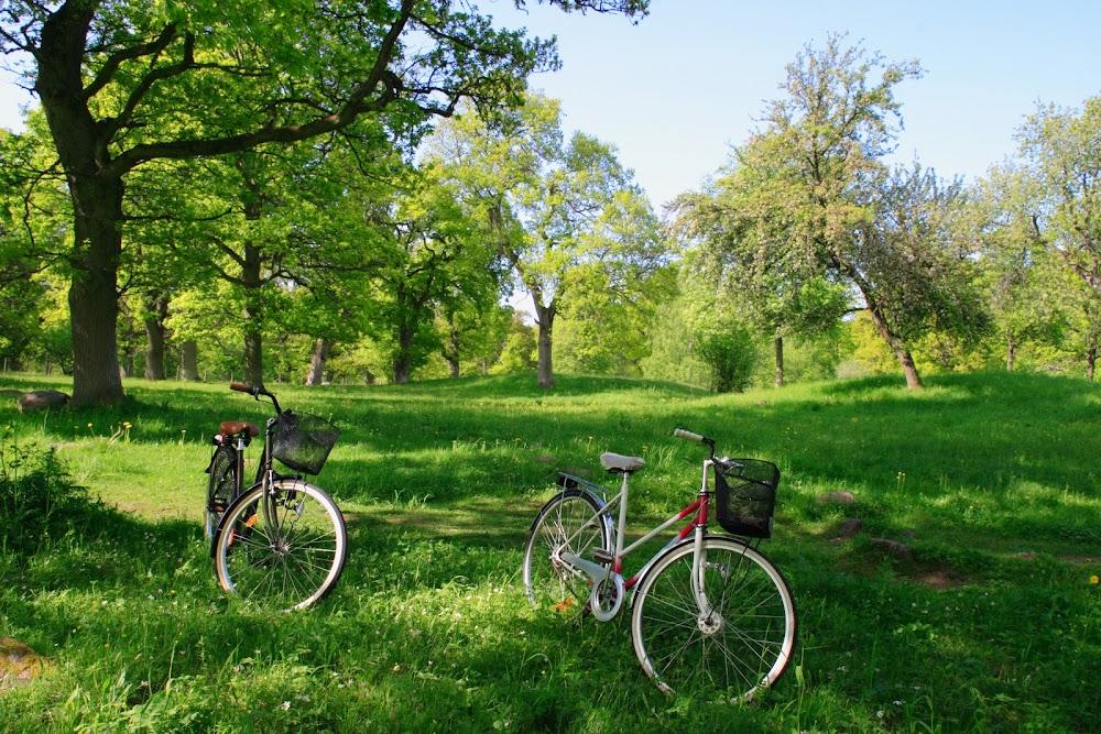 Entlang des Nagoldtalradweges erwarten Dich frische grüne Wiesen und Felder, die zu einer Vesperpause einladen