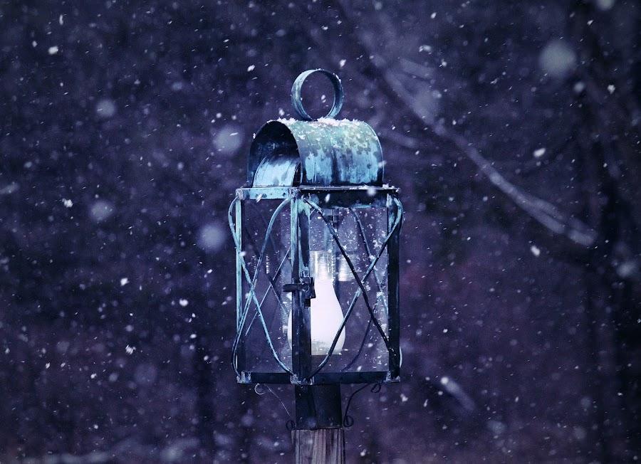 Winter Light by Sue Delia - City,  Street & Park  Night ( lantern, winter, night,  )