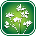 2450 Utah Wildflowers icon