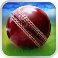 Cricket WorldCup Fever download