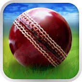 Download Cricket WorldCup Fever APK on PC