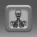 Skeleton Creatures FX logo